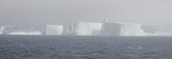 Giant ice floes along the Antarctic Peninsula